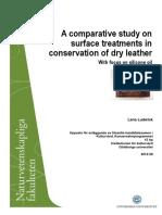 Leather Treatementgupea 2077 32480 1