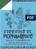 CURRÍCULO DE PERNAMBUCO - EDUCAÇÃO INFANTIL E ENSINO FU NDAMENTAL - ANOS INICIAS E ANOS FINAIS - CADERNO DE CIÊNCIA S E MATEMÁTICA .pdf