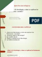 1._LA_PERSPECTIVA_SOCIOLÓGICA_PDF.pdf
