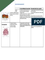 braden c organelle sales pitch- peer notes