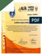 Certificado NR 33
