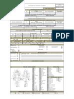 F.81Investigación de Accidentes e Incidentes V02