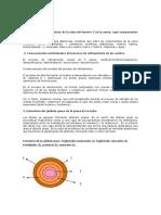 EXAMEN 6. Bromatología