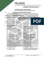 INFORME ADICIONALN N° 02 PACOYAN.docx