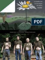 abeilles_mg1-1.pdf