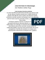 Anestesia y Control Del Dolor En Odontología 3 (1).docx