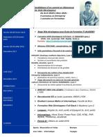 CV Valentino CASCIONE 2019 Alternance.pdf