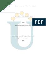 TrabajoColaborativo2YINETH_teorias de Personalidad (1)