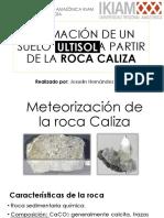 Formación de un suelo ULTISOL a partir de la ROCA CALIZA - Procesos Pedogenéticos - Meteorización de La Roca Caliza