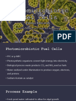 Photomicrobiotic Fuel Cells