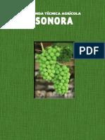 Manual Sonora II