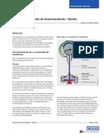 ds_in0006_es_es_10867.pdf