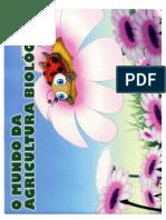 joaninha.pdf