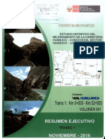 29 Resumen Ejecutivo.pdf