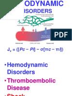 Ch4-Hemodyn (1).pdf