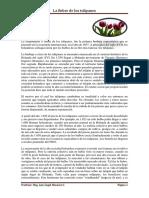 Introduccion a Los Mercados Financieros_mascareñas