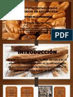 Linea Del Tiempo-panaderia