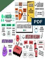 QQD45_Sistema_Digestorio.pdf