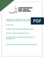 ENSAYO CONCEPTO SOCIEDAD DE LA INFORMACIÓN PROFE RAFAEL.docx