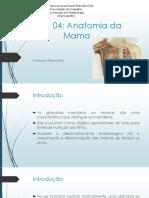 Radiologia - Mamografia