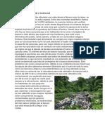 Problema Social y Ambiental (Ambiente y Desarrollo Sostenible)