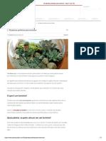 35 plantas perfeitas para terrários - Assim que Faz.pdf