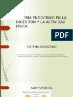 Sistema Endocrino en La Digestión y La Actividad