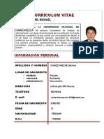 Currículum Vitae Michell 2019