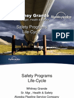 Safety Programs Life Cycle