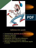 4.Inflamación Aguda y Crónica