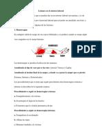 LESIONES EN EL ENTORNO LABORAL.docx