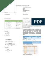 Formato Reporte Stokes ok.docx