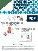 viasderespiraciomaniobras1 (1)