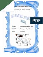 Gas Naturalvehicular (Gnv)
