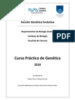 Practicos_2010.pdf