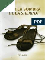 Bajo la sombra de la Shekina - Roy Gane.pdf