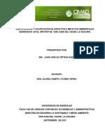 Identificación y Calificación de Impactos Ambientales.