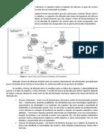 Síntese das Análises de Requisitos.docx