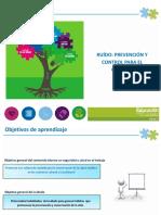 RIDSSO EL RUIDO.pdf
