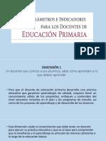 Perfiles Parametros e Indicadores de Los Docentes de Educacion Primaria