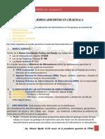Colque.Tania_Potencial Hidrocarburifero de Chuquisaca.Doc.docx
