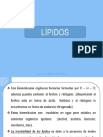 lipidos-2015