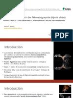 Costo de digestión del murciélago pescador Myotis vivesi