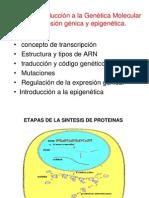 Fundamentos de Psicobiología I_Tema 4
