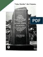Istoria Parcului Valea Morilor.docx