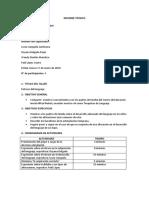 Informe Técnico Practicas de Lenguaje