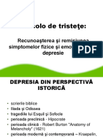 4. Depresia