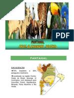 Geografia - Pré-Vestibular Dom Bosco - Pantanal