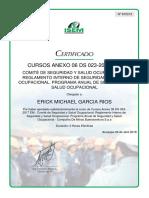 Comité de Seguridad y Salud Ocupacional.