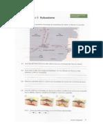 Ficha 6 - Vulcanismo.docx